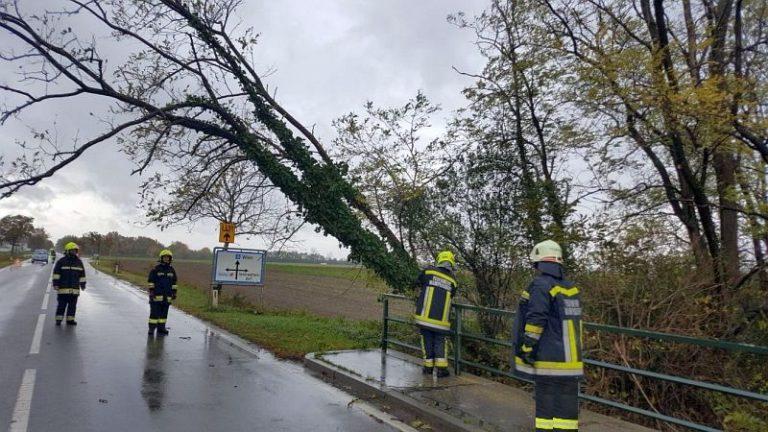 01-Fotocredit-Feuerwehr-Wampersdorf.jpg