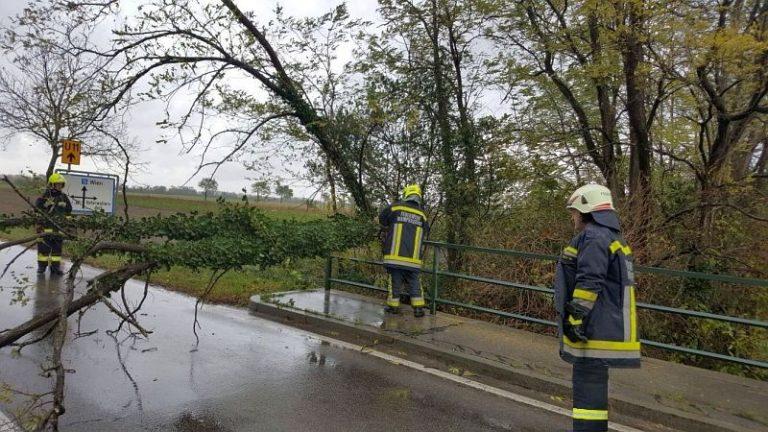 02-Fotocredit-Feuerwehr-Wampersdorf.jpg