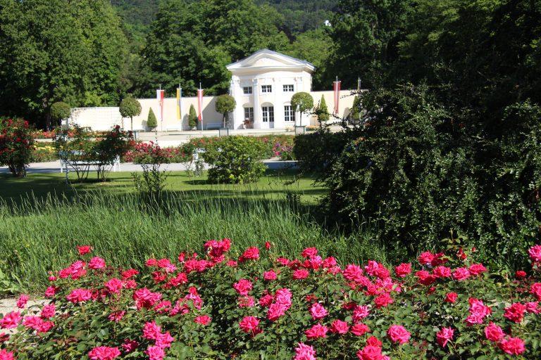 20140606 Rosarium Orangerie