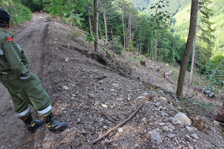 20160705 Forstunfall bei Furth a.d.Triesting im Bezirk Baden